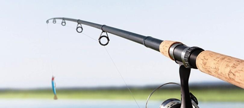 Top 4 Des Meilleures Cannes à Pêche Casting Guide
